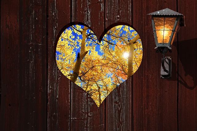 vyříznuté srdce
